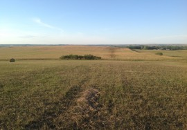 80 Acres, Dryland Crop, Rock County, Nebraska – PENDING SOLD