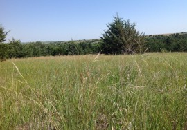 40 Acres, all grass, recreational unit, Knox County, NE