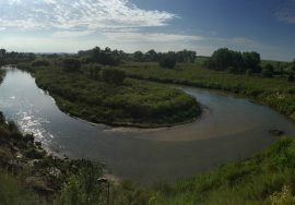 80 +/- Acres Cedar River Frontage, Greeley County, NE