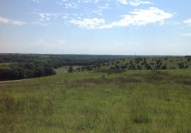 402+/- acres, All Grass Unit, Including CRP, Creek, Pond, House and Outbuildings – PENDING SOLD