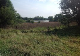 24+/- Acres – house, outbuildings, grass, CRP and North Loup River Frontage