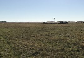 321+/- Acres, all grass unit, Holt County, Nebraska