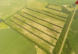80.14 +/- Acres Recreational/Cropland – Antelope County, NE – PRICE REDUCED