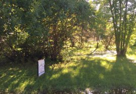 1 Bare Lot – Lake Ericson, Nebraska