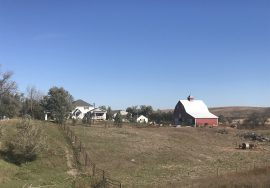 15+/- Acres, house, barn, and multiple outbuildings – 81648 Haskell Creek Ave., Ord, NE