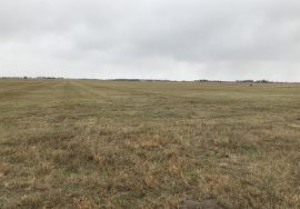 438 +/- Acres Meadow and Grazing Unit Holt County, NE – PENDING SOLD