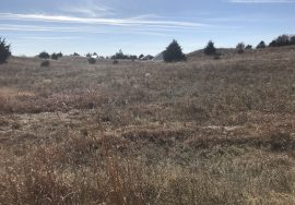Lot 24 Calamus Country Acres, Garfield County, NE